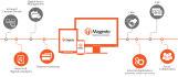 do Magento Development Project