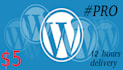 install wordpress multisite within 12 hours