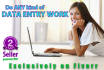 do any type of Data Entry Work, 3 hours