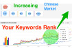 optimize the website keywords for Chinese language