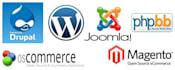 install any wordpress joomla vbulletin drupal for you