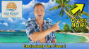 produce a 20 word video from any beach or tropical location