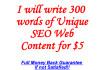 write 300 Words of Unique SEO Web Content