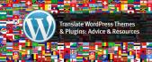 translate your Wordpress theme, plugin