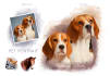 paint a your portrait or pet like shown in my portfolio