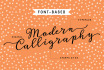 design a FONT based Modern Calligraphy Logo for you