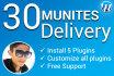 install WordPress plugins and customize it