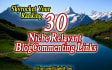 provide 30 NICHE Relevant Blog Comment High Quality