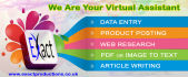 do 2 hours Data Entry service,PDF to excel or word and copy paste work