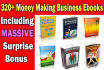 give you over 320 Money Making Business EBooks