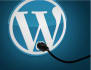 develop small wordpress plugins for your requirement
