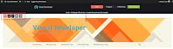install Visual Developer Plugin