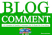 write two comments on your 2 different blog or website