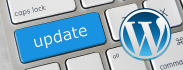 update WordPress and its Plugins to Latest Version