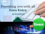 do any type of data entry work within 24 hours
