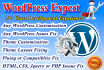 fix WordPress issue html, css or customization