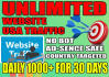 drive real website targeted  USA,traffic,website visitors