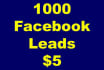send you 1000 Facebook leads