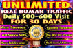 drive real website targeted USA,traffic,website visitors for 30 days
