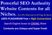 be your Website SEO Authority Content Writer