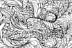 draw a very fancy detailed black line illustration