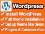 customize Wordpress theme or plugin install theme like demo