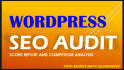do Highly Detailed Wordpress SEO Audit