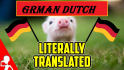 translate any thing from Dutch to English