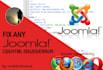 fix your joomla css,html issue or error