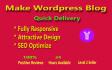 make attractive WordPress blog for you