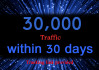 provide unlimited, real, usa targeted traffic, visitors for 30 days