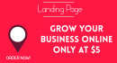 create a professional and attractive landing page for your business