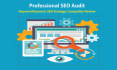 analysis your site and produce detail SEO audit report to rank NO1 in Google