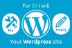fix or modify your Wordpress site or theme