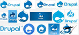 setup Drupal within one hour into any Linux