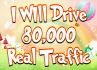 drive usa targeted website,traffic,visitors