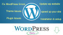 fix wp errors or wp issues,customize wordpress theme