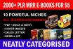 give 2000 ReBrandable Ebooks Articles mrr plr