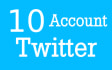 create 10 Twitter Complete Profiles