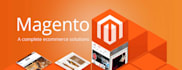 install Magento ecommerce software on your server
