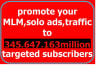 promote your mlm link,solo ads,website to 345,647,163million targeted subscriber
