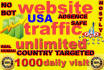 send super targeted website,traffic,1000 daily visitors