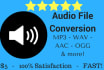 convert an audio file to any format