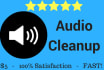clean up, edit and make your audio file sound excellent