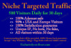 drive niche targeted website,traffic,visitors