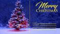 design awesome Christmas postcard