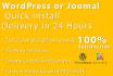 create Professional Wordpress or joomla website