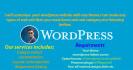 customize your wordpress site with wordpress theme