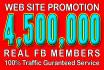 do Web Site Promotion Via 4,500,000 Social Members
