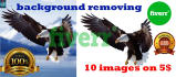 precisely peel off  background from 10 images in 24 hrs